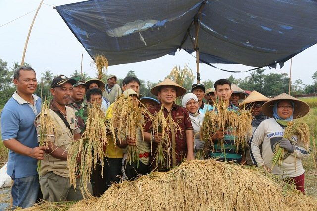 Gubernur Lampung mengapresiasi upaya petani hingga meraih surplus dan menempati peringkat terbaik ke-4 se- Indonesia