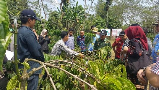 Pemprov Lampung Tinjau Lokasi Wisata Kopi